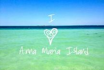 Anna Maria Island, Florida / One of Tripadvisor's Top Island's in the USA Call to book your vacation today! http://www.annamariaislandhomerental.com https://www.facebook.com/AnnaMariaIslandBeachLife GROUP BOARD RULES: If you want to be added to any of my group boards as a contributor, follow the board and then comment on a pin on THIS board. Mention the board to which you'd like to be added. No blatant advertising, please post only beautiful photos of Anna Maria Island. Advertisers will be banned from boards. / by Anna Maria Island Beach Life