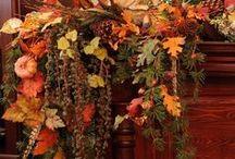 Autumn / by Carol Morreale