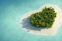 Beach Hearts - Valentine's Day / Coastal Valentine's Day Hearts - Sirenia Style! http://www.annamariaislandhomerental.com https://www.facebook.com/AnnaMariaIslandBeachLife Twitter: https://twitter.com/AMIHomeRental