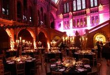 Entertainment at the Natural History Museum /  The Natural History Museum has three areas for spectacular evening events. The Darwin Centre is our exciting, newest event space and also includes a courtyard – a secret oasis in the heart of London. This breathtaking venue can accommodate 50–350 guests.