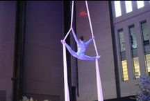 THEME: Matisse / Aerial silks, gypsy jazz performances and silhoutte artists were just some of the acts we put on for a homage to one of modern art's true greats