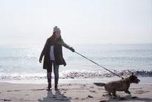 Animals & Pets / by Freunde von Freunden
