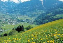 The Sound of Music / My favorite movie. I saw it when I was 16 going on 17. Went on a Sound of Music tour in Salzburg and surrounding area in Austria. One of my favorite things.