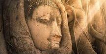 A World of Buddhas