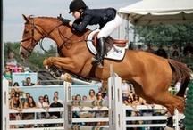 Equestrians / by Valerie Daifotis
