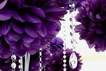 Romantic Purple pt.2