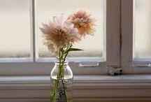 Dahlias / Dahlia varieties, bouquet ideas, vases, and art