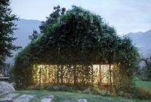 Shed Envy / I covet your garden shed.
