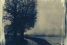 Cyanotypes + Sun Prints / Cyanotypes and sun prints