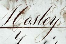 Script + Cursive + Hand Lettering
