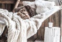 Cocooning / Toute l'inspiration pour cocooner en hiver ! Fausse fourrure, plaid, teintes neutres, ambiance cosy, tout y est !