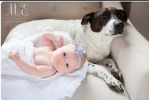 { dogs & babies }