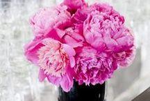 W E D//Flowers