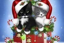 święta i koty