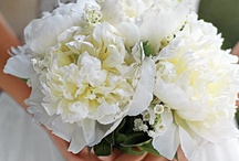 Flora / The floral flourishes that bring joy and delight to every romantic occasion.