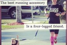 Dogs: Running with our BRD