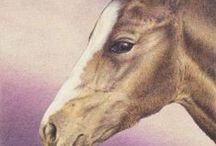 horses - original drawings by Yelena Shabrova / My horses in colored pencil, pastel pencil, pen and ink / by Yelena Shabrova