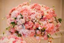 Spring Wedding / Ideas for a Spring Wedding!  / by Impression Bridal