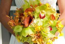 Fall Wedding / by Impression Bridal