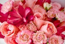 Pretty Bouquets / by Impression Bridal