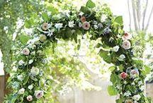 Wedding Arches! / by Impression Bridal