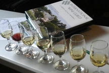 Professional Wine Courses / by GUSTO Tastings