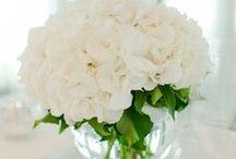 A Florist's Granddaughter
