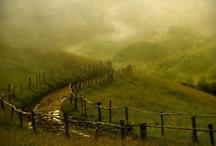 Paths...................