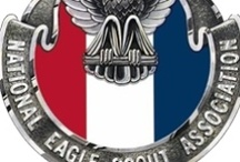 Eagle Court of Honor / For our Eagles... / by Theresa Barnewall