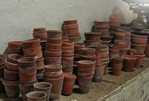 TERRA COTTA POTS / by ~SHELLEY BREWER~