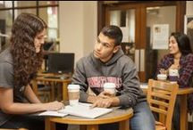 Academic Excellence / by Manhattanville College