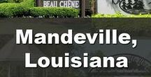 Mandeville, Louisiana / Explore all that Mandeville, Louisiana has to Offer.  Things to do, Offers, Real Estate, Area news, and much more.  Interested in Buying or Selling a Home?  Call Wayne Turner, Owner and Broker or Turner Real Estate Group, 985-626-1313 or visit SellWithWayne.com