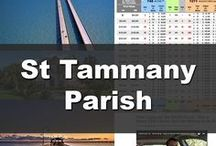 St Tammany Parish / All About St Tammany parish, from local stories, Real Estate, Subdivision News, and things to do. Wayne Turner is a top Realtor on the North Shore of New Orleans, and has been in Real Estate for 21 years! Call Wayne today if your considering buying or selling Real Estate at 985-626-1313