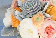 Wedding details / by Kate Wardwell Crabtree