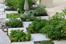 Verde, Garden beauty