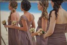 Eufloria Bride's