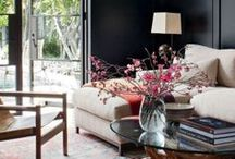 Living Rooms/Family Room Design Ideas / Inspiration for Family Rooms and Living Rooms