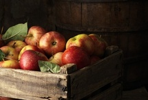 apple orchard / by Ginny Branch Stelling