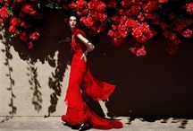 Rojos / by Paola Moreno