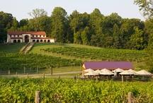 Spirits: Maryland Wine