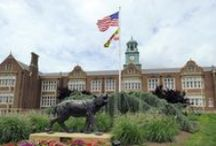 Maryland: Colleges & Universities