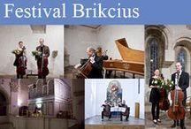Festival Brikcius / FESTIVAL BRIKCIUS - the 4th chamber music concert series at the Stone Bell House in Prague (Autumn 2015): #BACH330 - http://Festival.Brikcius.com .
