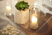 Tablescape Design / Collection of Tabletop Landscapes & Design / by Linda Lara