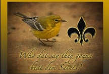 Geaux Saints / by Cindy Best
