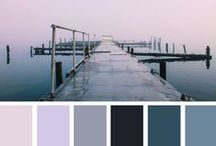Colour Palettes / Inspiration   / by Mandy Lewis-Houston
