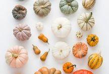 Fallen for Autumn / by Alex Ross