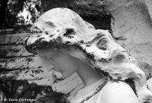 Black &White Photography