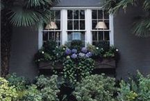 Landscaping.windowboxes. / by Jessica