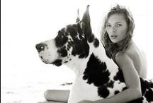 Fashion's Best Friend / by PinkClouds