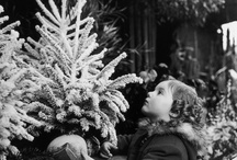 Christmas / by Rebecca Cramm